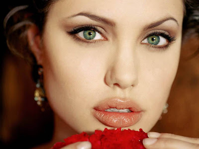 Angelina Jolie Normal Resolution HD Wallpaper