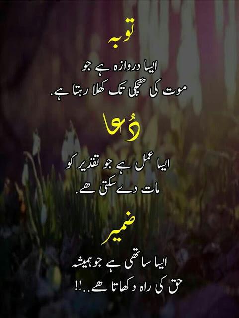 Life Truth Quote in Urdu