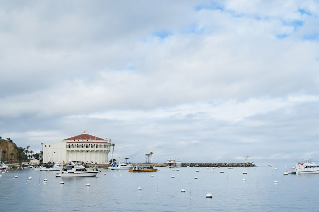 what to do in Catalina, Avalon Bay,, Catalina Travel Guide