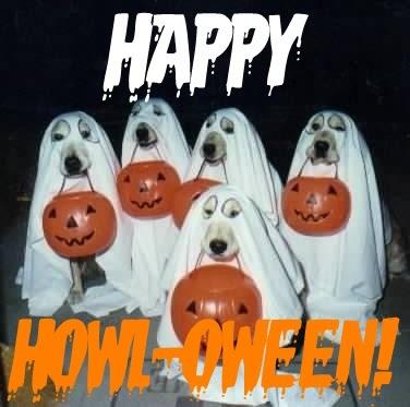 Image result for howl-o-ween