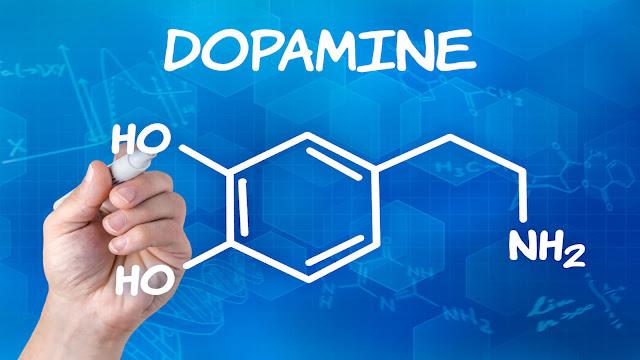 Cara Kerja dari Molekul Dopamine