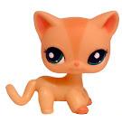 Littlest Pet Shop Multi Pack Cat Shorthair (#1764) Pet