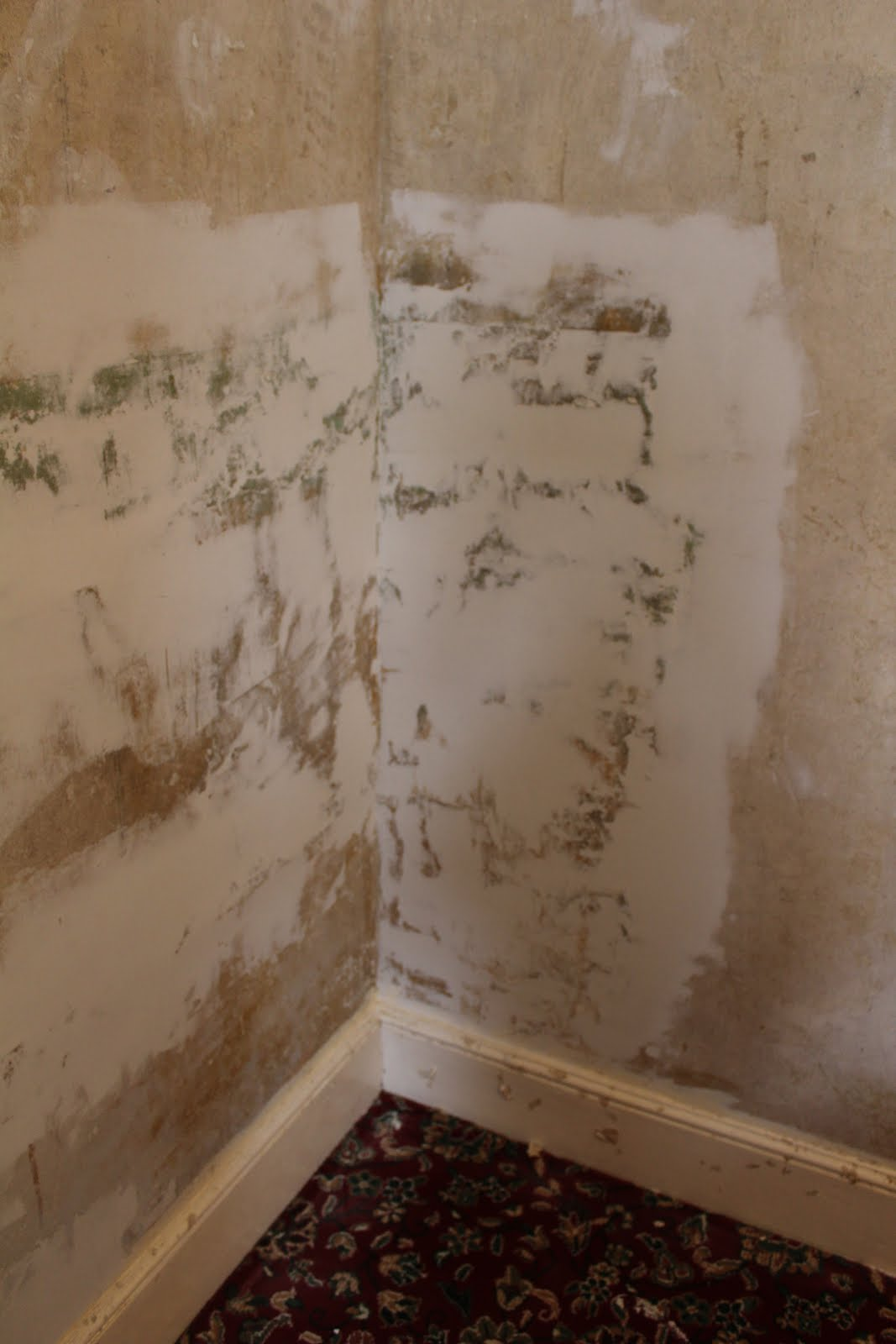 before and after plaster repair