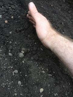 seed drill, hand, gardening