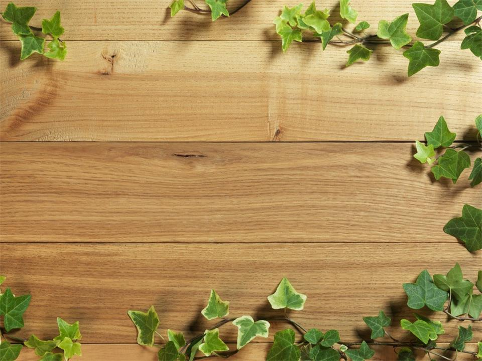 Green leaf and wood grain PPT background