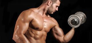 7 Tips Ampuh Meningkatkan Hormon Testosteron Pada Pria