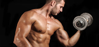 Testosteron yaitu hormon steroid terutama disekresi oleh testis laki-laki 7 Tips Ampuh Meningkatkan Hormon Testosteron Pada Pria