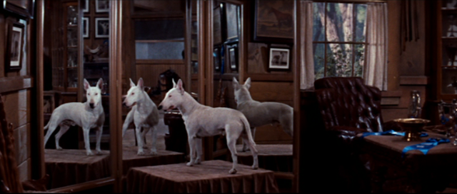 Wildfire in It's a Dog's Life (1955)