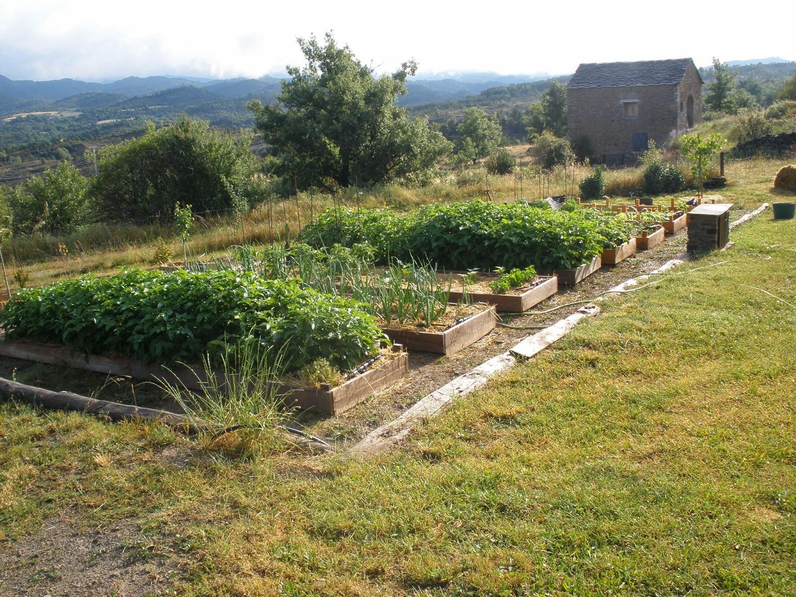El jard n de gautama bancales elevados for Piedrecillas para jardin