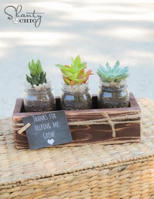 succulenti con porta vaso in legno fai da te
