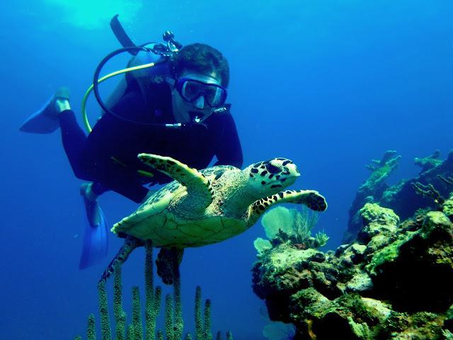 Dicas de Cancun - Mergulho Isla Mujeres