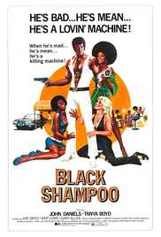Black Shampoo 1976 Watch Online