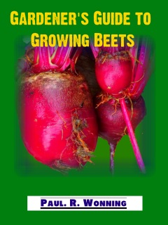 Gardener's Guide to Growing Beets