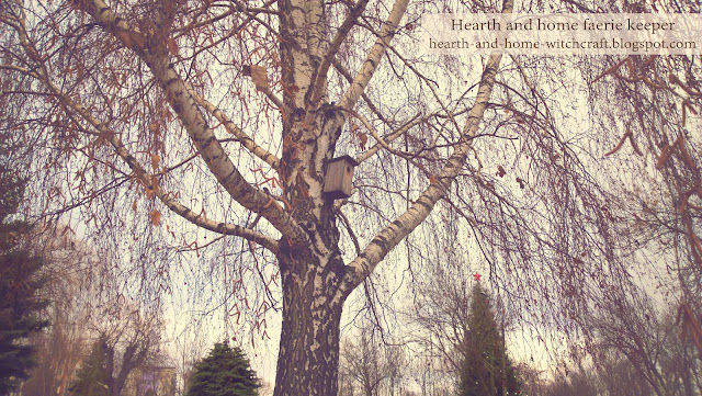 Беларусь, Белоруссия, Гомель, дом, зима, природа, размышления, сад, рукоделие, фауна, фотография, handmade, синичкин календарь, кормушка для птиц, домик для птиц, кормушка для птиц совими руками, сало, зерно, ягоды, птичий пирог, забота, доброта, домики