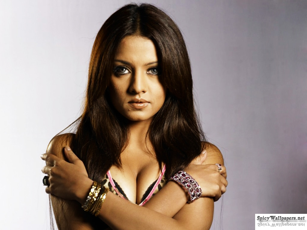 Sexy Bollywood Celebrities Celina Jaitley-8306