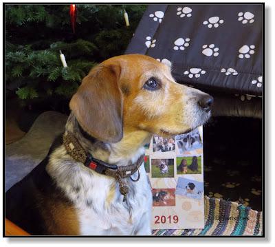 neues Jahr - neuer Kalender