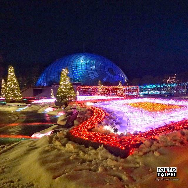 【鳥取花迴廊】西日本最大花園 燈海與花海加白雪的絕妙組合