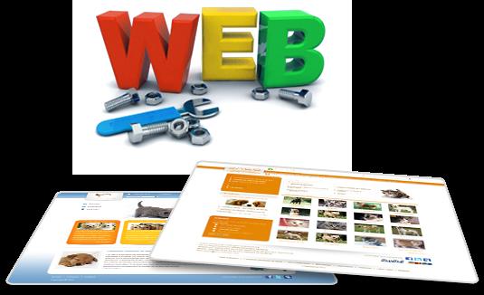 nâng cấp và chỉnh sửa website