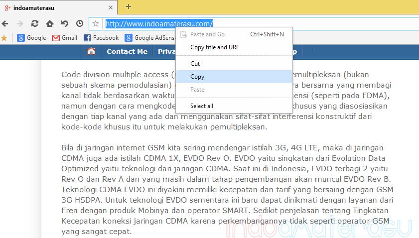 Cara copy dan paste halaman blog/ website yang dikunci tidak bisa klik kanan