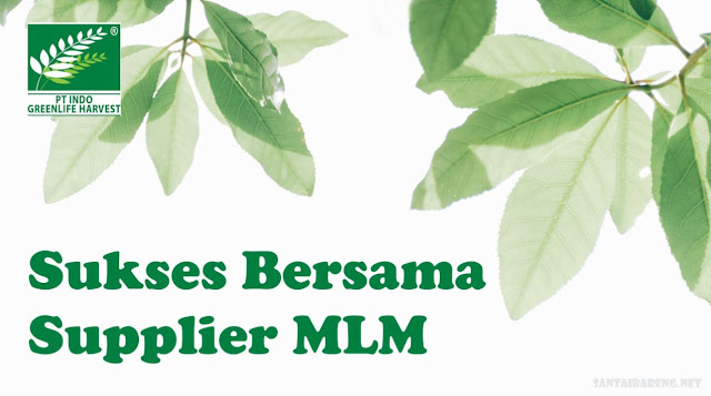 Supplier MLM Herbal