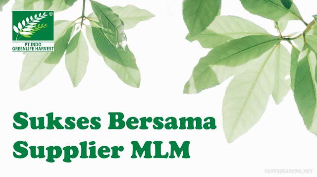 Supplier MLM Herbal