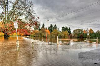 3 Dampak yang Disebabkan oleh Banjir dan Cara Antisipasinya