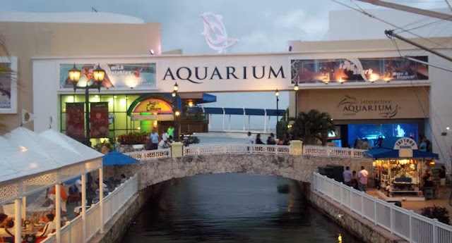 Interactive Aquarium em Cancún