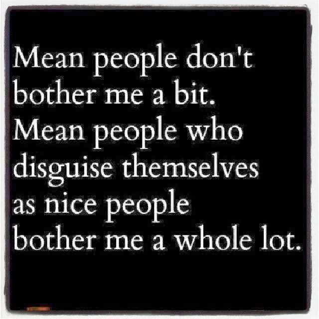 Mean People Quotes MEAN PEOPLE DONT BOTHER ME A BIT MEAN PEOPLE WHO DISGUISE  Mean People Quotes