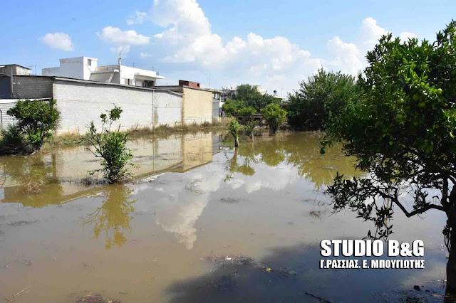 Επίκαιρη ερώτηση βουλευτή Επίκαιρη ερώτηση του βουλευτή του ΚΚΕ Ν. Μωραΐτη για τις πρόσφατες καταστροφικές πλημμύρες στην Πελοπόννησοτου ΚΚΕ για τις πρόσφατες καταστροφικές πλημμύρες στην Πελοπόννησο