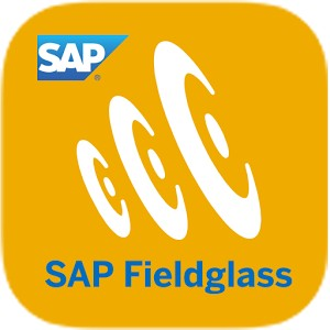 SAP Fieldglass - Consultoria-SAP.com