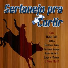 CAPA2 Download   Sertanejo Pra Curtir (2012)