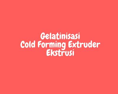 ekstrusi gelatinisasi