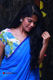 Actress Preetha Anandhan Pictures in Blue Saree 0015