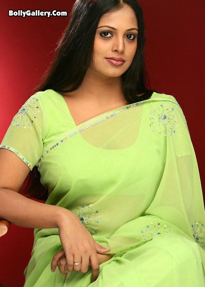 Actress Sindhu Menon Looks Hot In Saree - Hot Box Wallpapers-1840