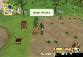 Download Harvest Moon Boy & Girl PPSPP ROM For PC Full Version - ZGASPC