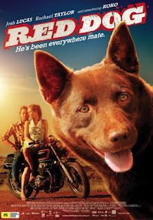 Chú Chó Đỏ