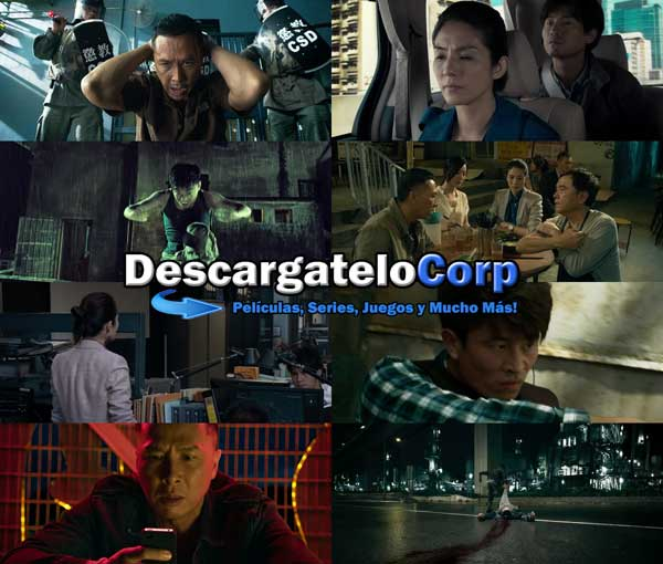 Descargar Kung Fu Jungle DVDRip Latino