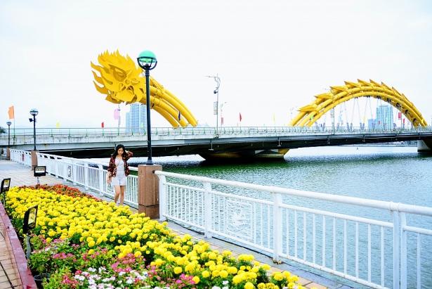 Con đường hoa Đà Nẵng Tết Nguyên đán Kỷ Hợi 2019 tổ chức ở đâu?