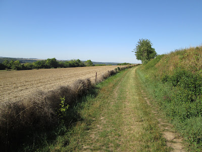 bushcraft randonnée