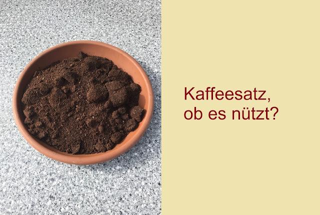 Kaffeesatz