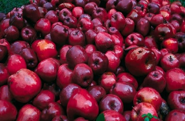 Κατασχέθηκαν 2,6 τόνοι μήλα και αχλάδια