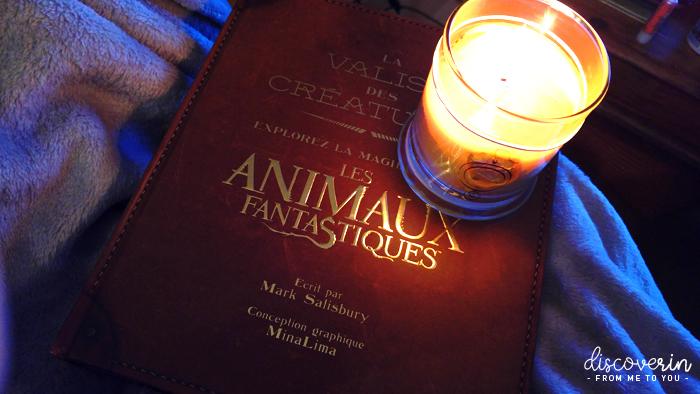 """Livre """" La Valise des Créatures """""""