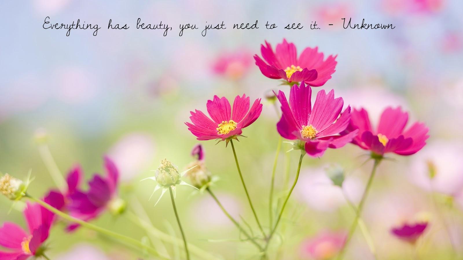 Imagine Flowers: Pretty Quote