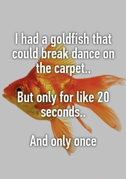 I had a goldfish that could break dance on the carpet. But only like 20 seconds... And only once