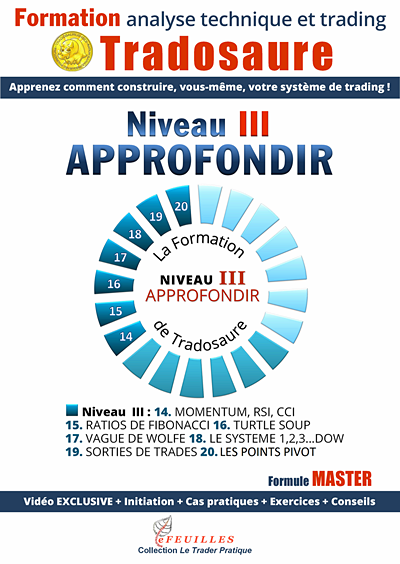 ANALYSE TECHNIQUE FORMATION TRADOSAURE NIVEAU III
