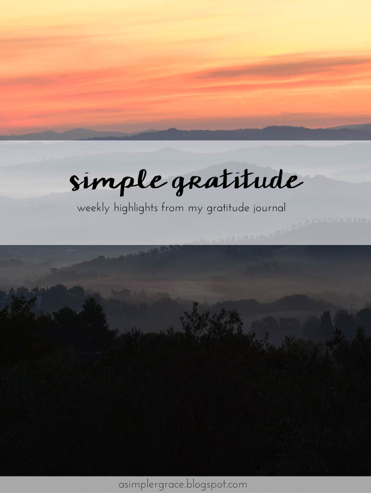 I'm sharing my #gratefulheart on the blog #gratitude #feelingthankful