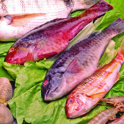 Photo of Fresh Fish and Seafood on the Canary Islands