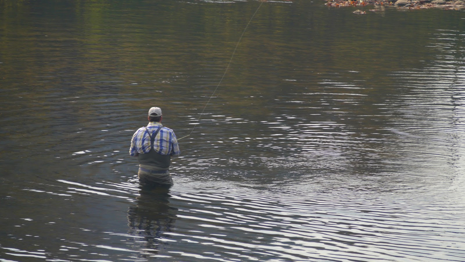 A man flyfishing in downtown Bryson City  click image to enlarge