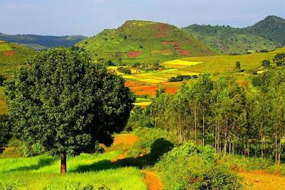 ARAKU VALLEY, Vishakhapatnam