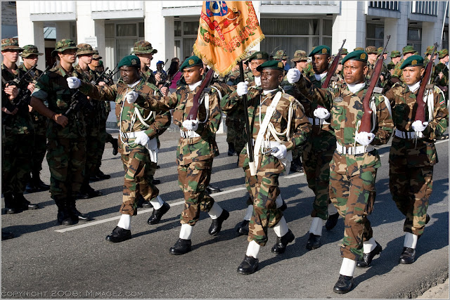 Армия Суринама